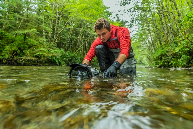 "Filmmaker Ben Hamilton is speaking tonight as part of the Fireside Lecture Series at the Mendenhall Glacier Visitor Center. ""The Salmon Forest"" will screen at 5:15, and he will do two talks at 6:30 and 8 p.m. (Image courtesy of Ben Hamilton)"