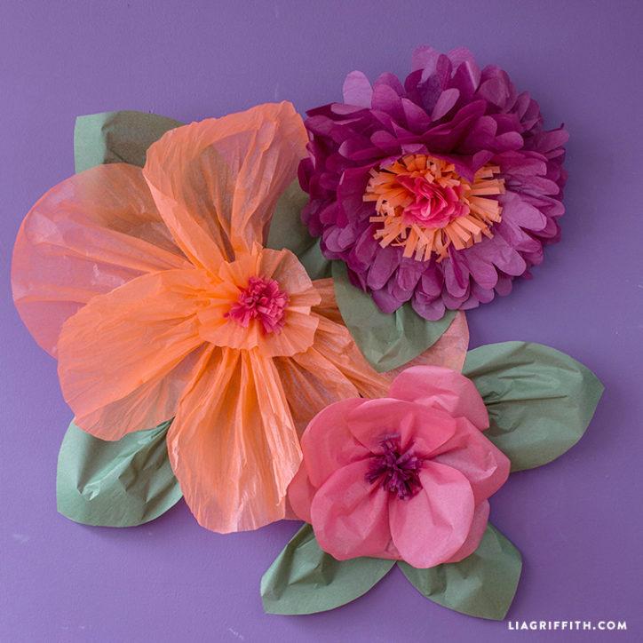 tissuejumboflowers