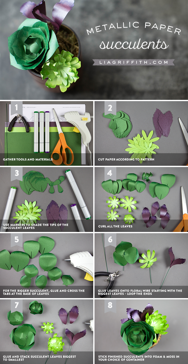 How To Make Diy Paper Succulents