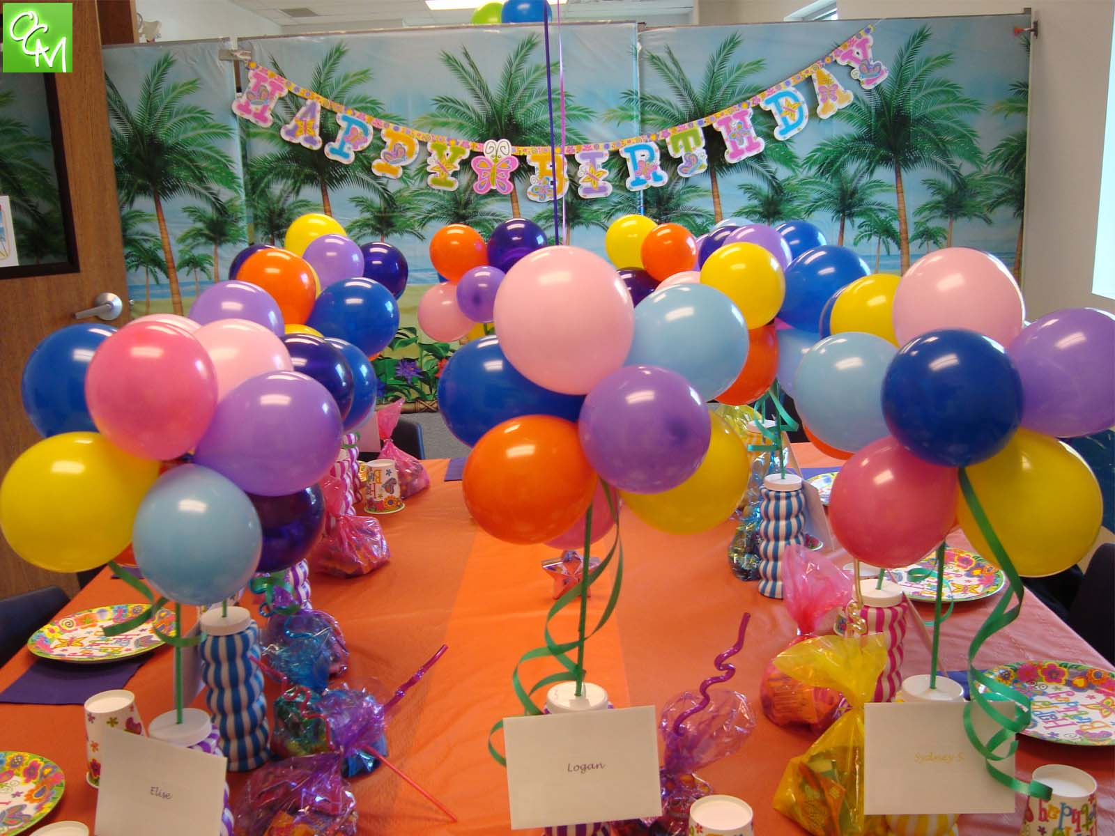 Paradise Park Novi Birthday Party Packages Oakland County Moms