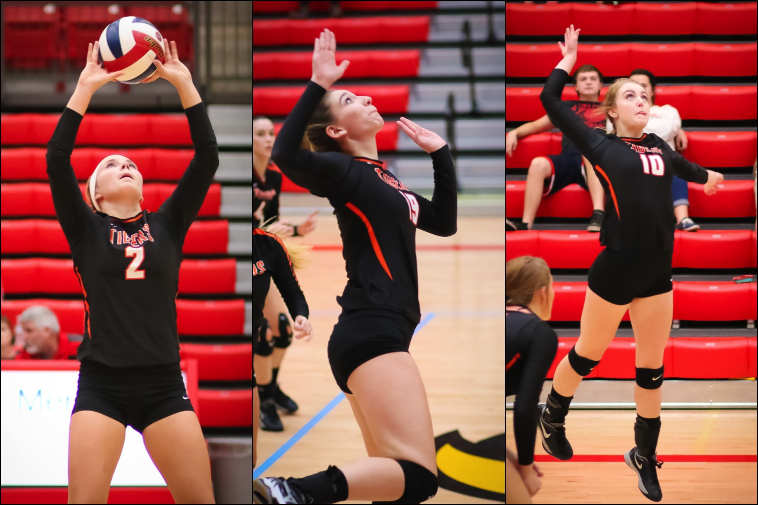 Three Lady Tigers Earn Academic All-State Honors