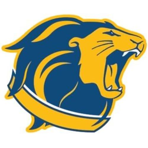 Image result for tcnj lions