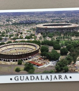 Estadio Jalisco & Bull Ring Postcard