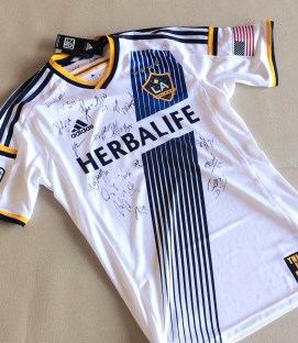 Los Angeles Galaxy Jersey Autographed by 2014 Championship Team