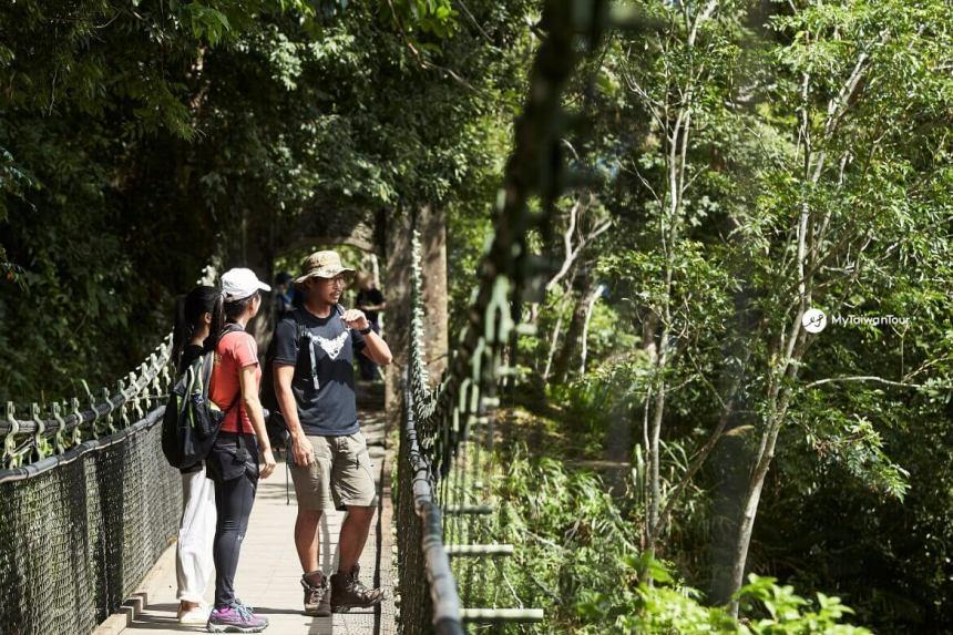 mytaiwantour_taiwan scene_ jade mountain hiking trail.jpg