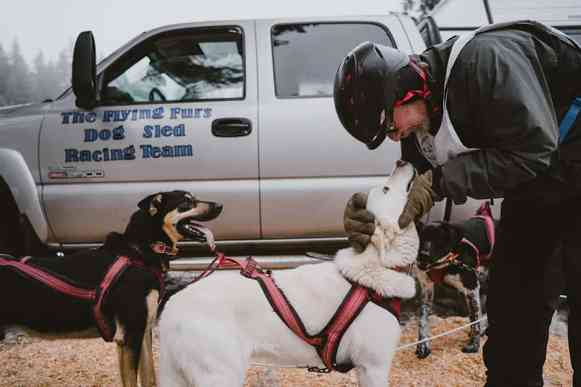 Capt Larry giving his lead dog, Pearl, a pep talk before the race