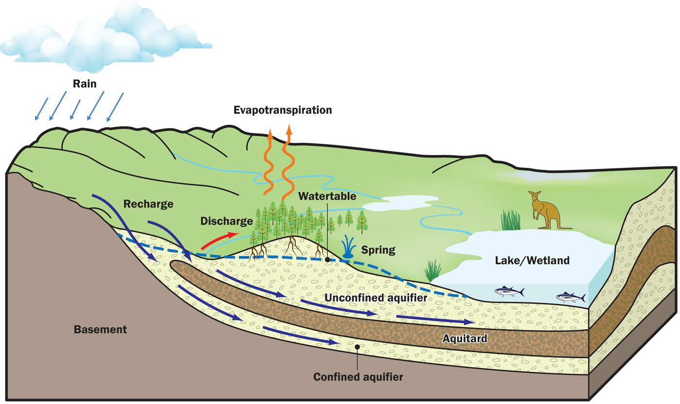 Aquifer Diagram Zone Of Saturation