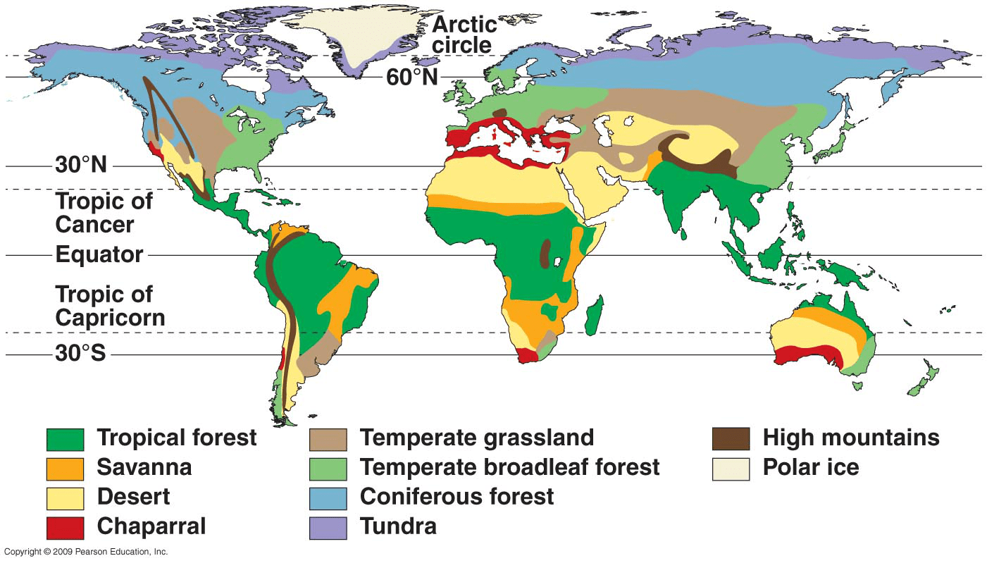 Climate Zones And Biomes Lesson
