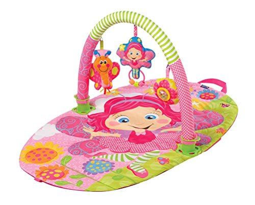 Playgro 0181583 Fairy Gym for Baby