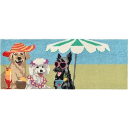 Frontporch Indoor/Outdoor Sassy Lassies Bright Rug 27″X72″ Multi – Liora Manne, Multicolored