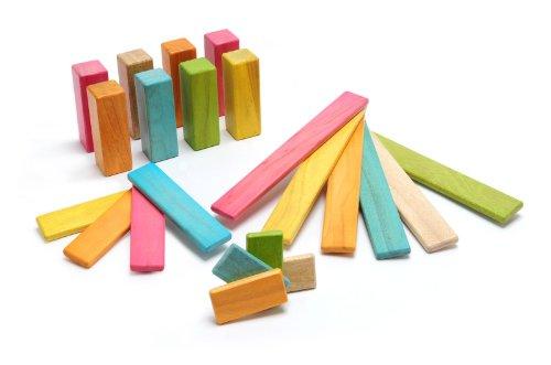Tegu 22 Piece Endeavor Magnetic Wooden Block Set, Tints