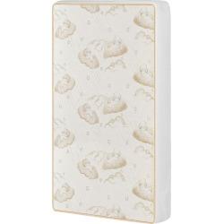 Dream On Me 2 In 1 Breathable Portable/Mini Crib Coil Mattress,