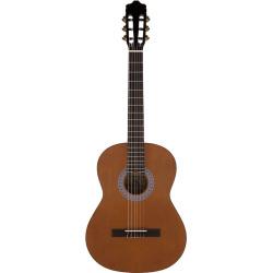 Archer Nylon String Acoustic Classical Guitar, Multicolor