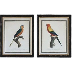 Vintage Parrot Wood Wall Décor 2 pc (28″x22″) – 3R Studios, Black