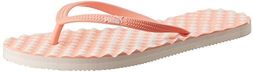 Puma Women's Pink Dogwood and Desert Flower Flip Flops Clogs and Mules – 5 UK/India (38 EU)