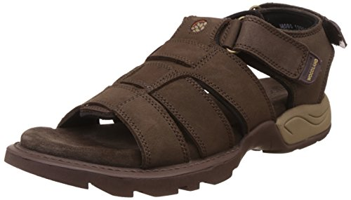 Woodland Men's Brown Leather Sandals and Floaters – 8 UK/India (42 EU)