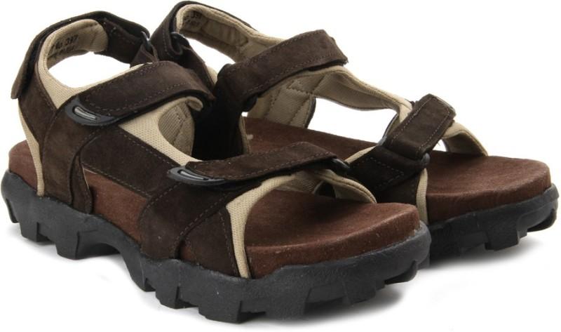 Andrew Scott Men Brown Sports Sandals