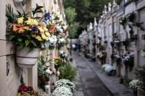 cementerio 16