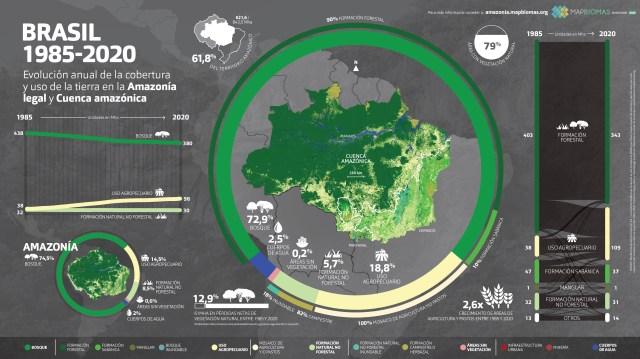 Amazônia - Perda de cobertura vegetal em 36 anos equivale a um Chile