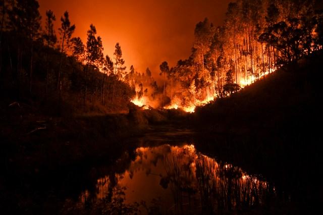 ( AFP PHOTO / PATRICIA DE MELO MOREIRA)