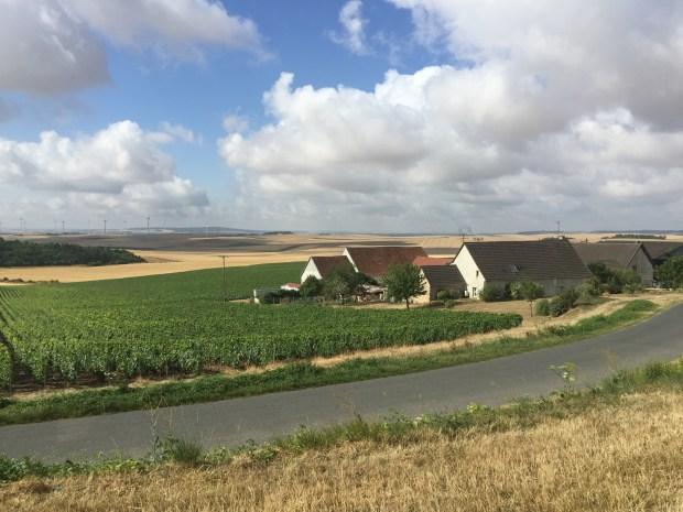 Un viñedo en la villa francesa de Bethon, donde viven unas 300 personas ( Esha Chhabra / The Washington Post)