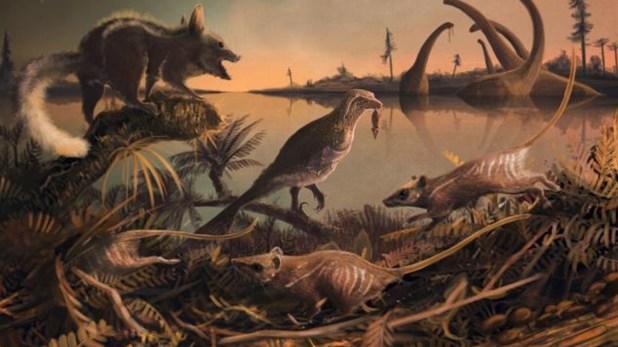 """Los primeros mamíferos habrían podido sobrevivir gracias a su """"aversión al gusto"""" y eliminado, así, la posibilidad de enfermar comiendo plantas tóxicas"""