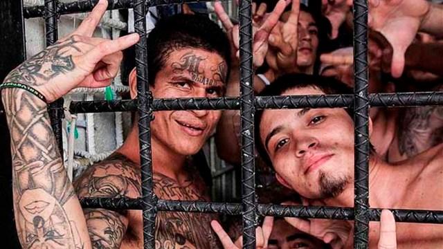 """El presidente norteamericano Donald Trumo sostuvo que: """"Miembros de la pandilla MS-13 están siendo removidos de a miles por nuestro gran ICE (Servicio de Inmigración y Control de Aduanas) y nuestros agentes de control fronterizo, pero esos asesinos vuelven a entrar como agua desde El Salvador y a través de México"""""""