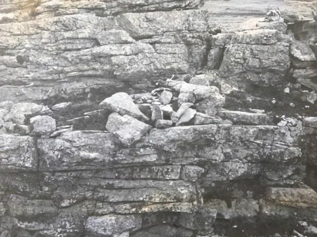 """""""Yo veía piedras apliadas o tierra removida y hacia allá iba en busca de los soldados muertos en combate"""", recuerda Cardozo"""