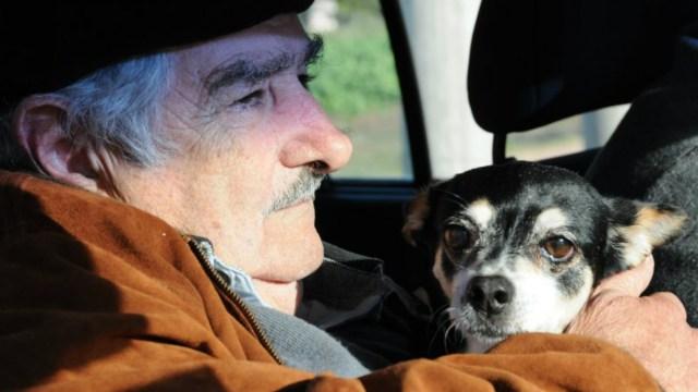 José Mujica, ex presidente de Uruguay, junto a su perra Manuela. (Gentileza de EL Observador).
