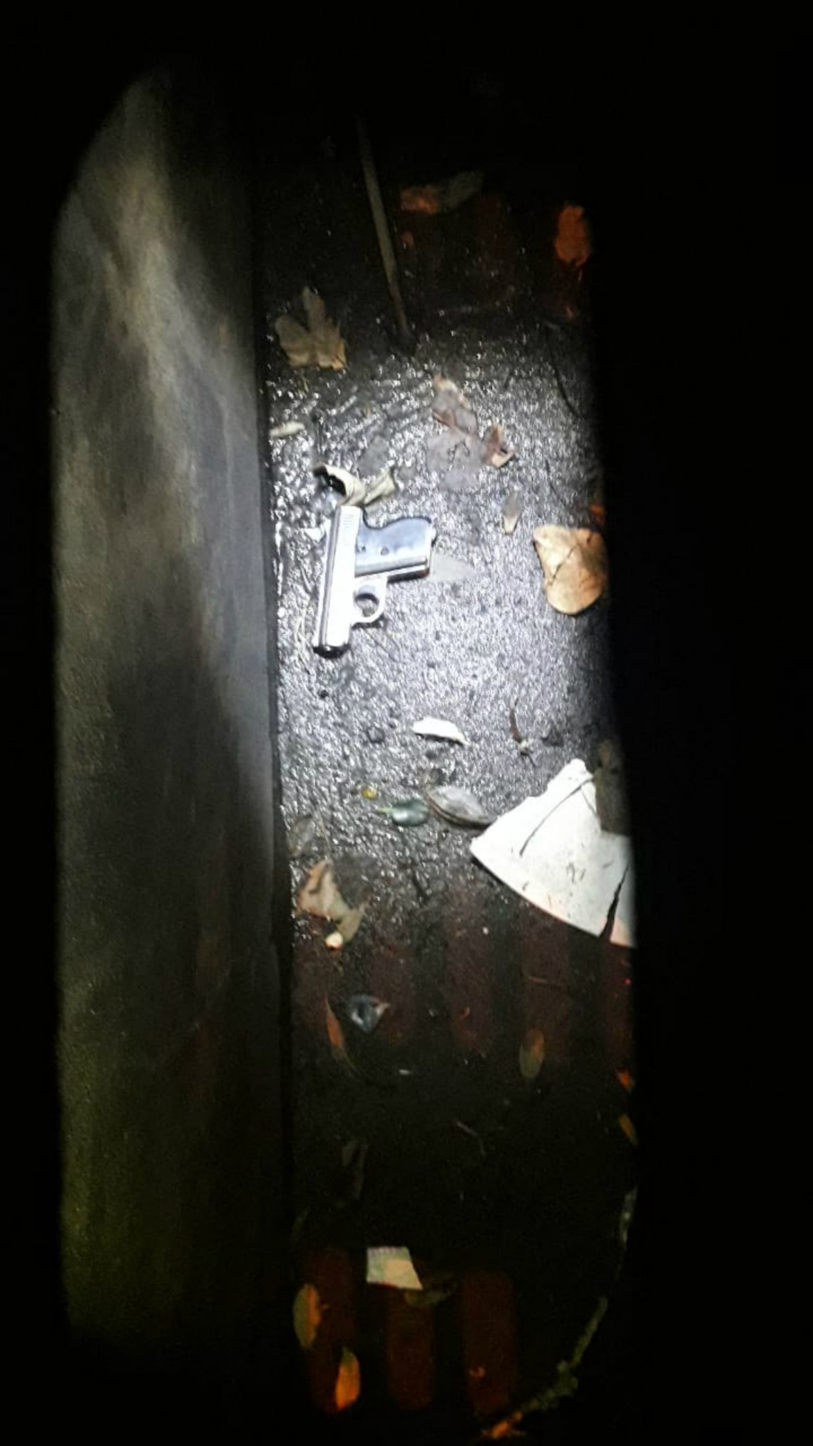 Las imágenes del arma encontrada junto al cuerpo.