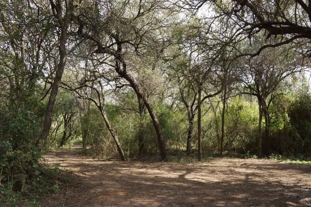 El patrimonio de Roseo, hoy convertido en Parque Nacional (Raquel Peiro)