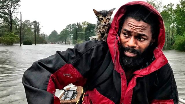 "Robert Simmons Jr.y su gato ""Sobreviviente"" (Andrew Carter/The News & Observer via AP)"