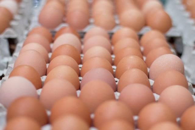 El huevo, una fuente de proteínas y vitaminas importante para la recuperación de los deportistas