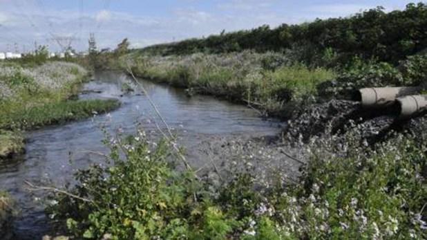 Cientos de empresas vierten sus desechos industriales en las aguas del Riachuelo