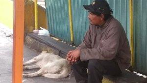 Un indigente fue señalado como el presunto responsable (Foto: @MundoPatitas)