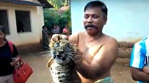 Uno de los aldeanos levanta al felino por los aires, que queda inmóvil aterrorizado (Foto: especial)