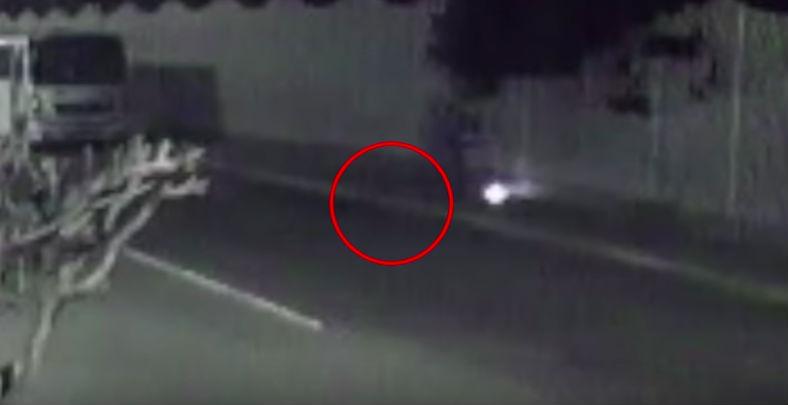 En el video se observa al perro acercándose por su voluntad al artefacto explosivo (Foto: Captura video)