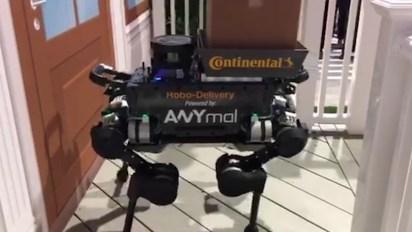 El robot que entrega el pedido