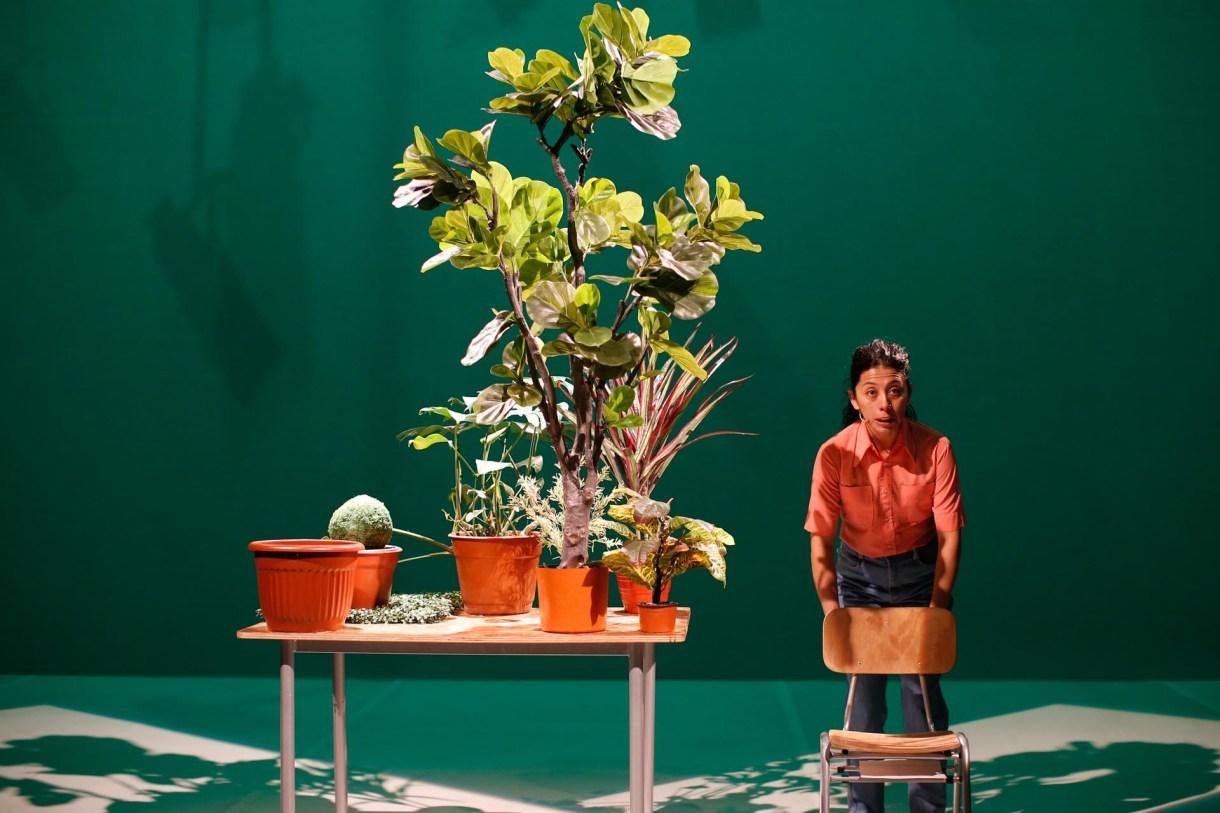 """""""Estado Vegetal"""" (Fundación teatro a Mil)"""