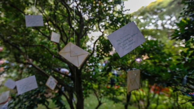 Entre los árboles se encontraban las cartas de invitación para Hogwarts