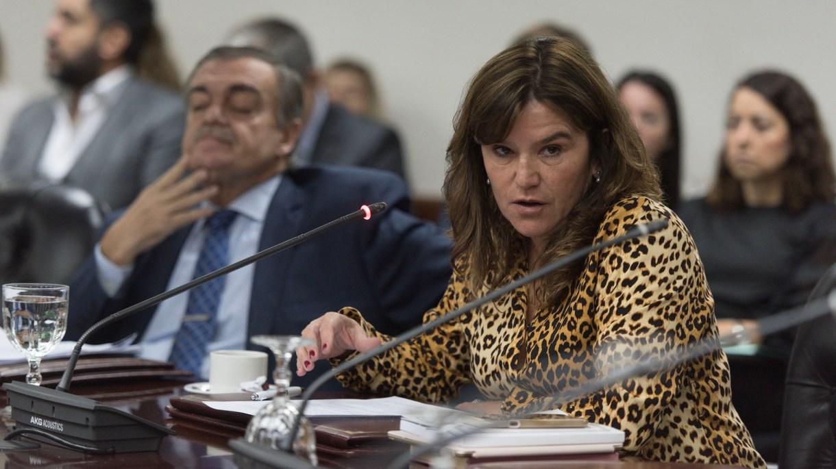La consejera y senadora radical Inés Brizuela y Doria impulsó la citación (Adrián Escandar)