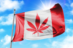 Legal Marijuana Sales Being in Canada