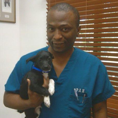 Plantation Animal Hospital LLC Our Staff