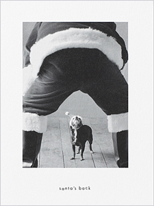 Holiday Cards For Pet Lovers