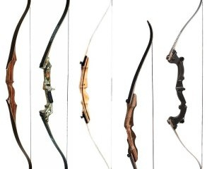 reviews of the best recurve bows
