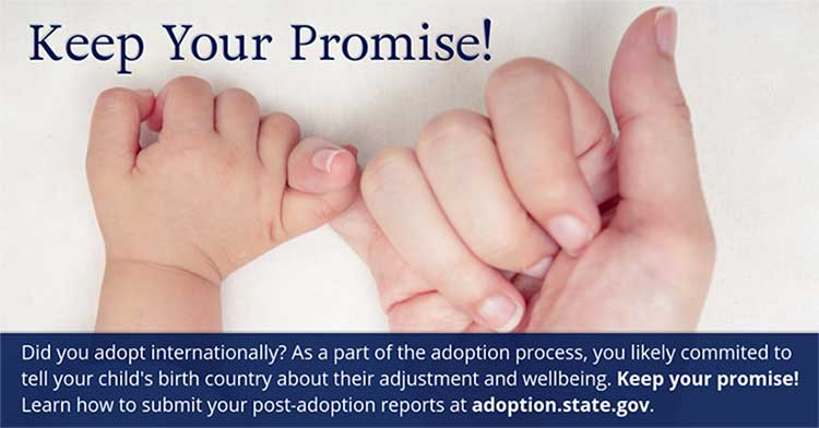 post-adoption report