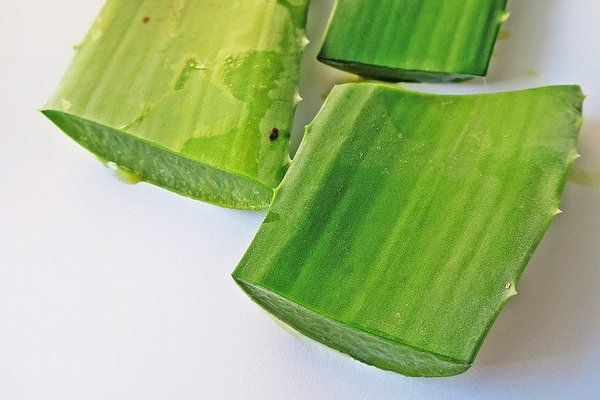8 Aloe Vera Home Remedies (Kumari) + How To Prepare Fresh Aloe Gel