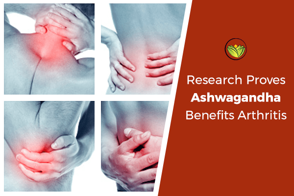 Research Proves Ashwagandha Highly Effective For Arthritis