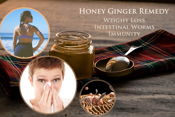 Honey Ginger Remedy For Immunity, Worms, Kapha And Vata Disorders