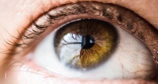 4 Step Ayurvedic Eye Care Ritual
